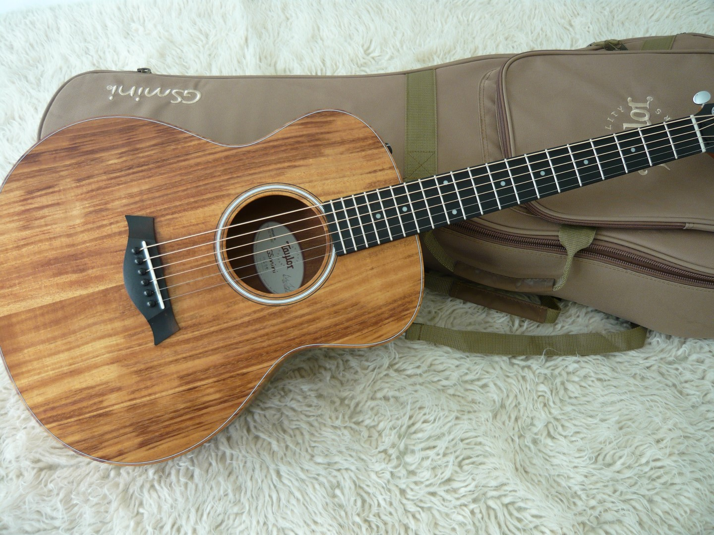 Taylor Travel Guitar For Sale