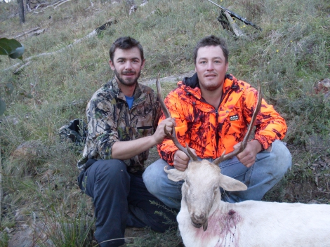 First Buck taken mourning after First fallow well done mate