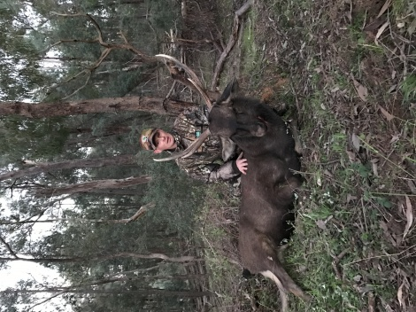 Dwayne from Tassie taking his first sambar stag