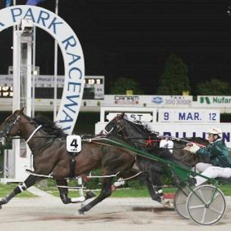 Auckland Trotting Cup