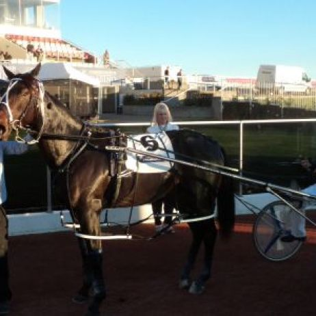 Lazarus winners circle after winning the $200,000 PGG Wrightson Yearling sales pace
