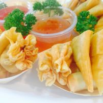 Mini Wontons, Spring Rolls and Samossas