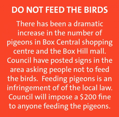 Woman launches legal action against council over swooping bird attack