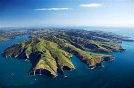 Chch City Tour-Banks Peninsula