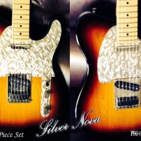 Bob from Illinois with the Very First Silver Nova Telecaster Guard & Control Plate Set