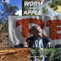 A WORM in the APPLE - book