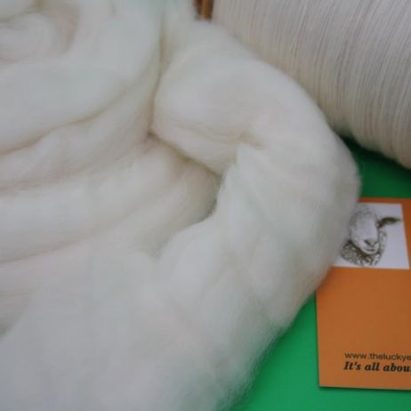 Tasmanian MERINO SF Combed Top ~ 100g pack