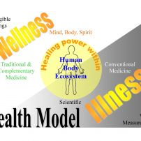 Health Model in English