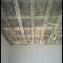 mould ceiling before
