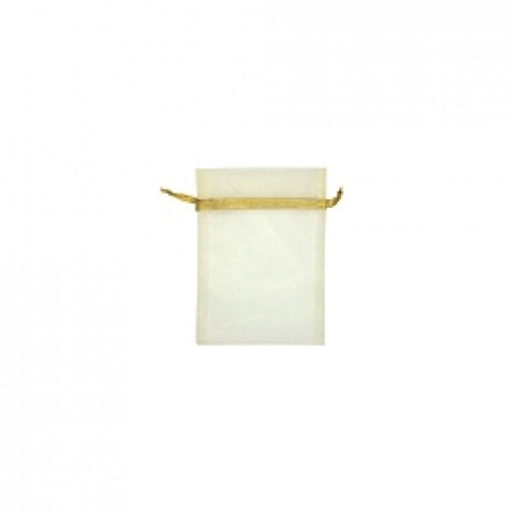 MINI ORGANZA BAG - CREAM GOLD