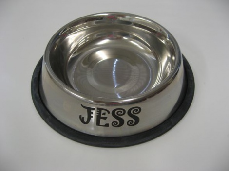 Stainless Pet Bowls