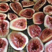 A. Fresh figs from our orchard