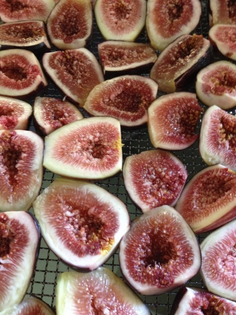 Fresh figs from our orchard