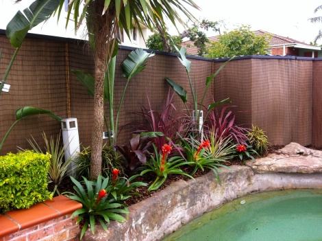 Tropical Garden Design #