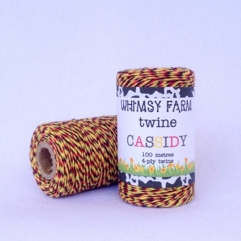 CASSIDY - 100M of 4-Ply Twine