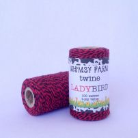 LADYBIRD - 100M of 4-Ply Twine