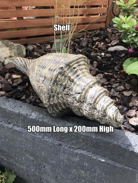 Shell Large