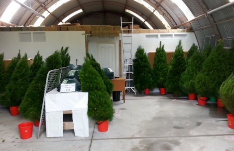 Christmas Tree Sales Barn