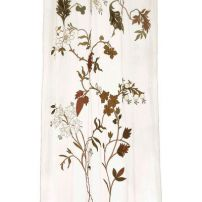 Multi flower Sheer on 50% off