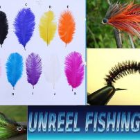 COLOURED OSTRICH HERL FEATHER