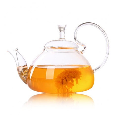Elegant Heat Resistant Glass Teapot 600ml