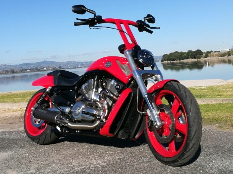 VROD MUSCLE T-BARS