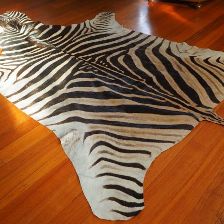 Genuine Rare and Unique Zebra Hide - Directly from Africa to You