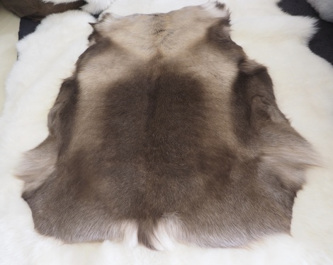 WP/8 : SOFT TONES AND A GENTLE RIBBING - A BEAUTIFUL XL PREMIUM REINDEER HIDE