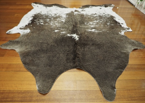 GREY/121:A BEAUTIFUL CURLY WINTER COAT OF BRONZED FAWN AND WHITE - A BIG & BEAUTIFUL PREMIUM COWHIDE
