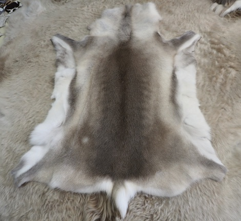 R5? Beautiful Soft Markings - A Genuine Traditionally Farmed Reindeer HIde