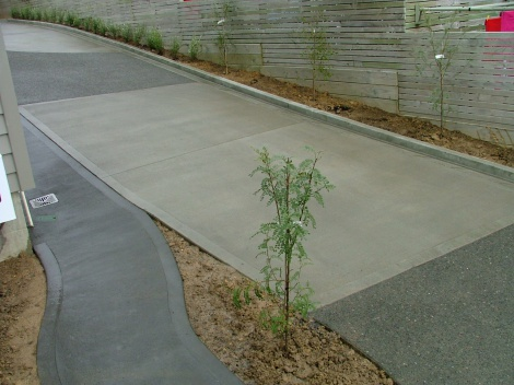 Plain/Exposed & Coloured Concrete