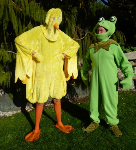 Animals - Frog and Chicken