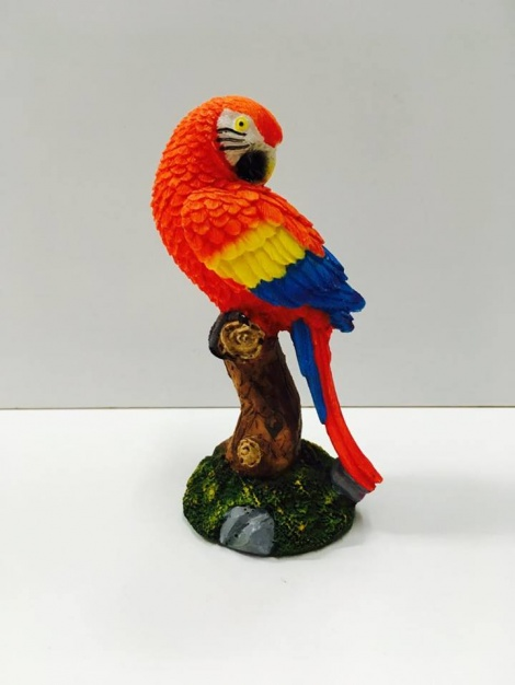 Parrot - Red