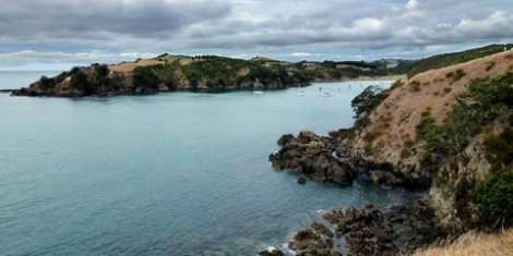 Waiheke: Walks for wine