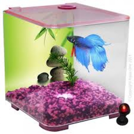 Aqua One Betta Style Pink w/ LED light