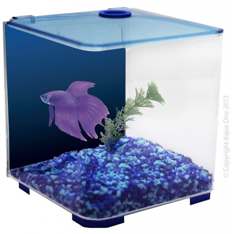 Aqua One Betta Style Blue