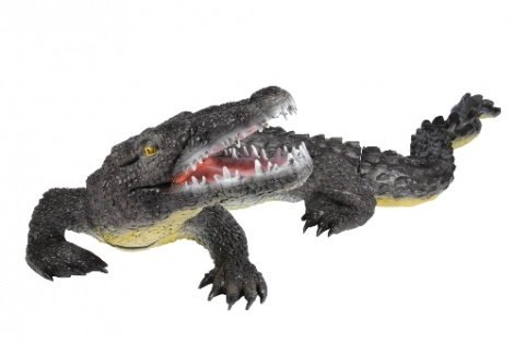 Franzbogen Alligator large