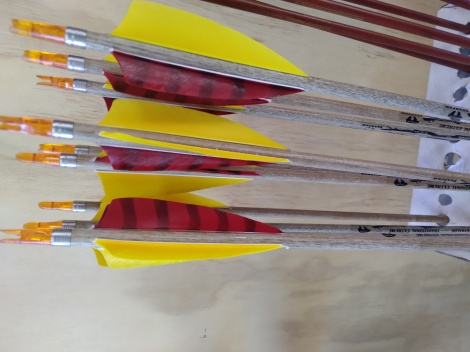 Bearpaw Traditional Extreme Stalker Arrows