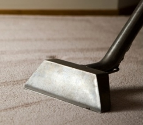 Premium Carpet Cleaning Service