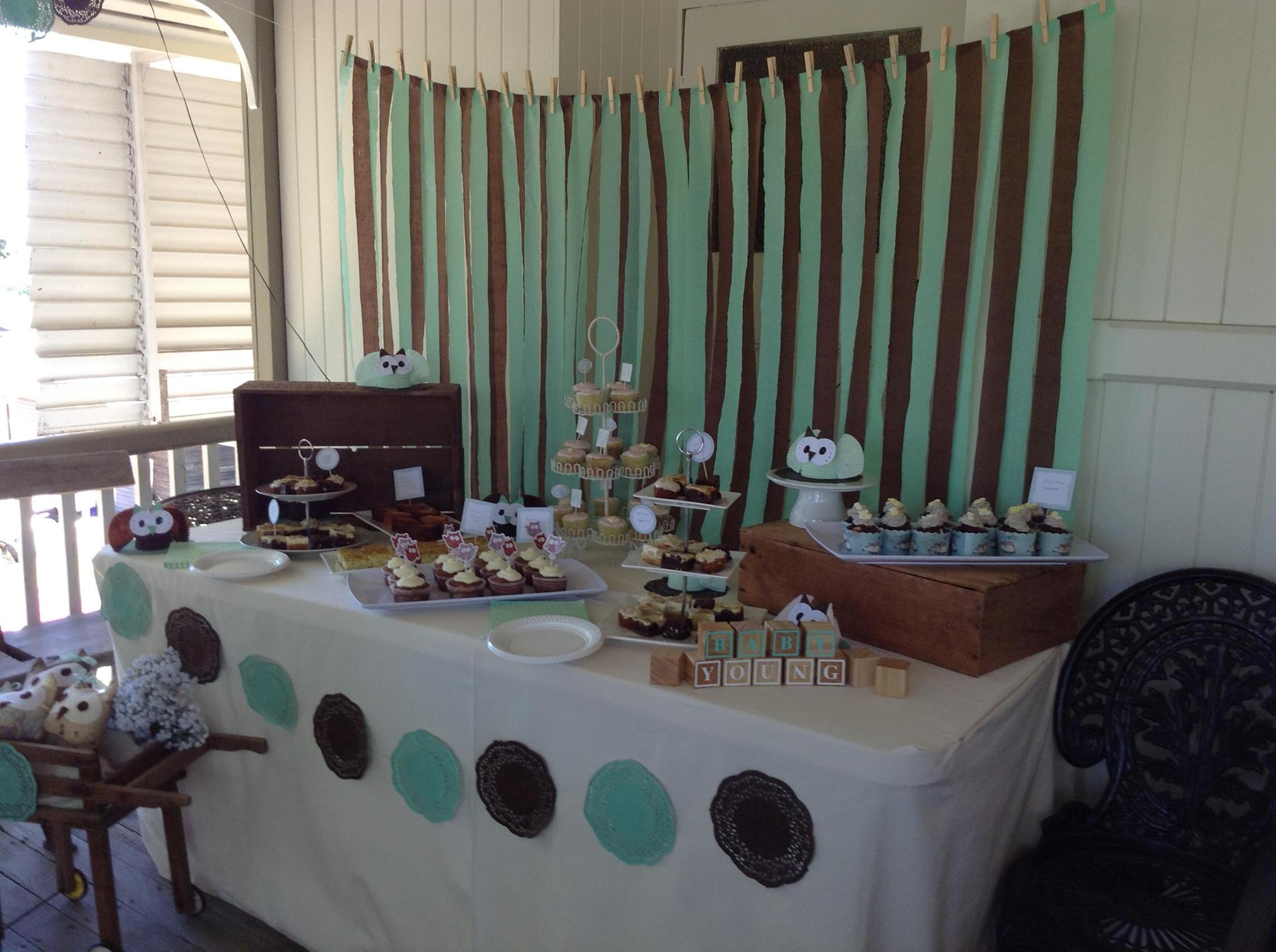 Baby Shower Owl Mint Green And Brown Theme All Set Table