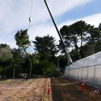 Crane Removal Heathcote, Christchurch